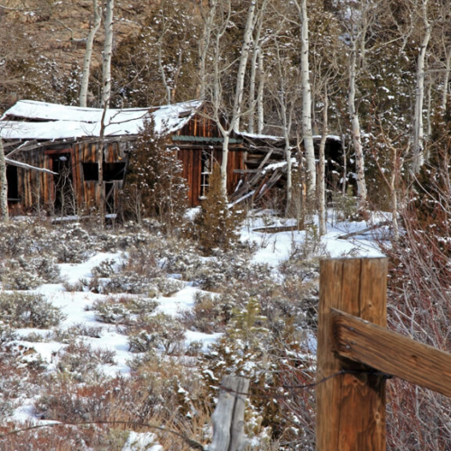 Old Cabin in Poudre Canyon